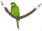 Pet Vision SisalPerch-Swing for medium to large size birds