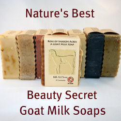 Goat Milk Soap Product